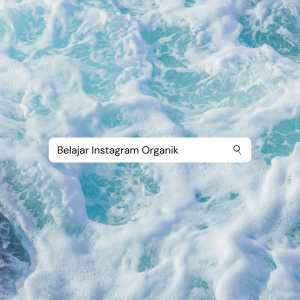 Link Belajar Instagram Organik